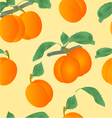 Seamless texture apricots with leaves vector image
