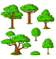 cartoon trees set on a white background vector image vector image