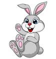Cute rabbit bunny sitting vector image vector image