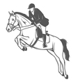 Equestrian sport jockey on a jumping horse vector image