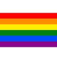 Gay flag vector image