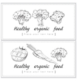 Healthy organic food Fresh and tasty horizontal vector image vector image