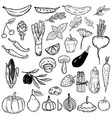 set of hand drawn vegetables and fruits design vector image