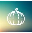Squash thin line icon vector image
