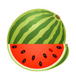 watermelon with slice isolated on white vector image