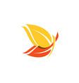 beautiful yellow orange butterfly logo symbol icon vector image vector image