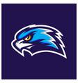 hawk head mascot vector image