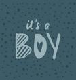 its a boy handwritten inscription bashower vector image