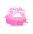 silhouette of flamingo on pink watercolor spot vector image vector image