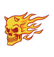 skull burning fire vector image
