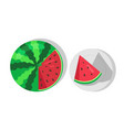 sweet juicy watermelon and cut piece of watermelon vector image