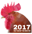 chinese new year 2017 background vector image