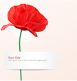background with Poppy flower vector image
