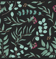 colorful seamless pattern with eucalyptus branches vector image