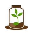 green sprout in jar logo graphic element