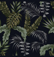 night tropical pattern leaves seamless black vector image