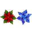 poinsettia flower christmas star vector image vector image