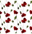 Poppy flower field seamless pattern vector image vector image