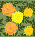 seamless pattern with yellow and orange marigolds vector image