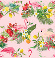 tropical fruits flowers and birds background vector image vector image