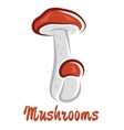 Colored cartoon forest mushrooms vector image