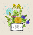 decorative floral sketches vector image vector image