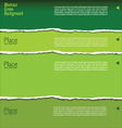 green torn paper background with space for text vector image