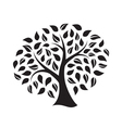 silhouette a tree vector image vector image