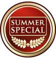 summer special icon vector image vector image