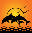 dolphin silhouettes on sunset background vector image vector image
