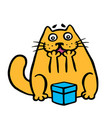 funny orange cat enjoys the gift in the box vector image
