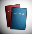 Two passports vector image vector image
