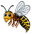 bee with big eyes on white background vector image