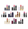 lipsticks in tubes palette pomade applicator vector image