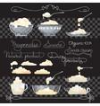 Sour cream handwritten words spoons jug and vector image vector image
