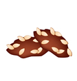 Two Homemade Almond Cookies on White Background vector image vector image