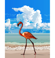 cartoon bird flamingo walking on the beach vector image