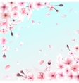 Blooming cherry Spring background Falling sakura vector image