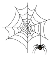 Halloween spider on web vector image