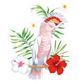 parrot ara with tropical plants and flowers white vector image vector image