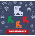 Skating icon Sport winter symbol Colored skate vector image