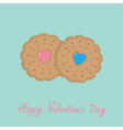 Two biscuit cookie cracker with pink and blue vector image