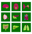 assembly of flat shading style icon human organs vector image