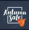 autumn sale design with yellowed poplar leaf vector image vector image