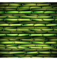 Background of bamboo vector image vector image