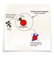 Carboxyhemoglobin Joining the hemoglobin carbon vector image vector image
