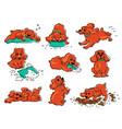 dog behavior drawing set - cartoon orange puppy vector image vector image