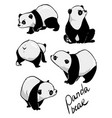Hand drawing cute panda with a lot variation