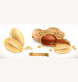 peanut 3d realistic icon set vector image