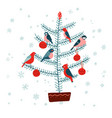 christmas fir tree with birds decorated vector image